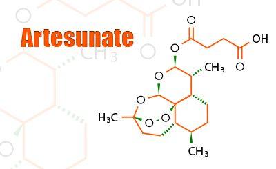 Wie kann Artemisinin gegen Krebs eingesetzt werden?